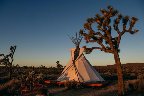 Why Should I Go Glamping?