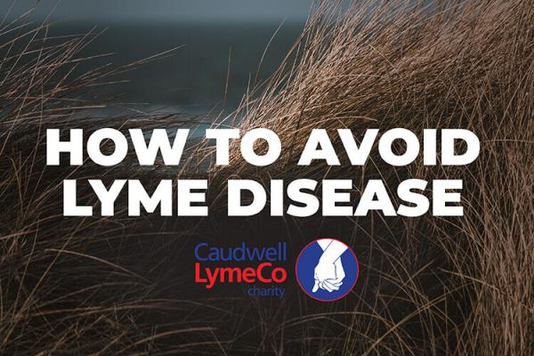 How to Avoid Lyme Disease