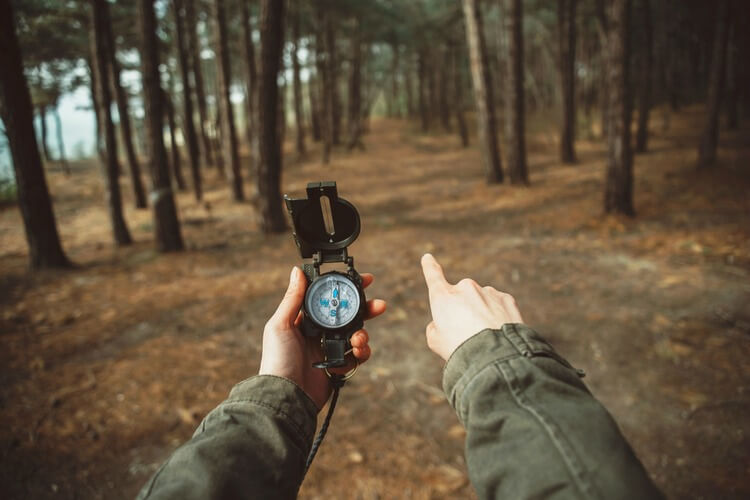 Hiker holding a compass and pointing in between trees