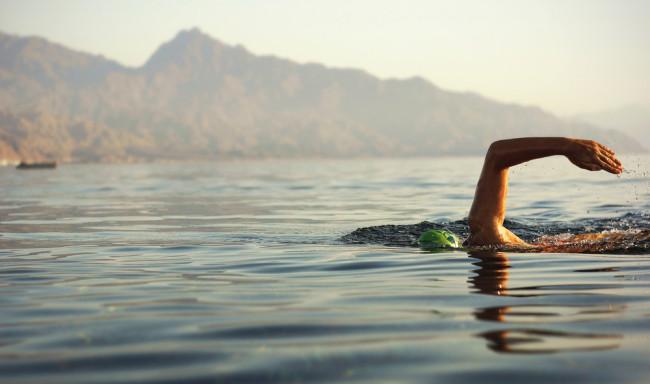 wild swimmer in open water