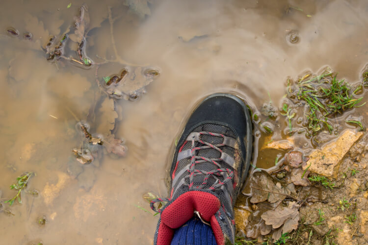 how to clean hiking boots